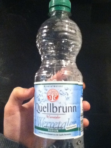 Quellbrunn Medium 0,5 l PET