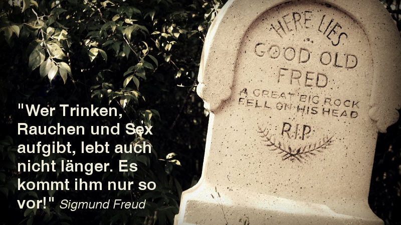1418995108 spruch freud high